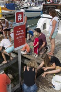 Nye hashtagskilte på Rørvig havn